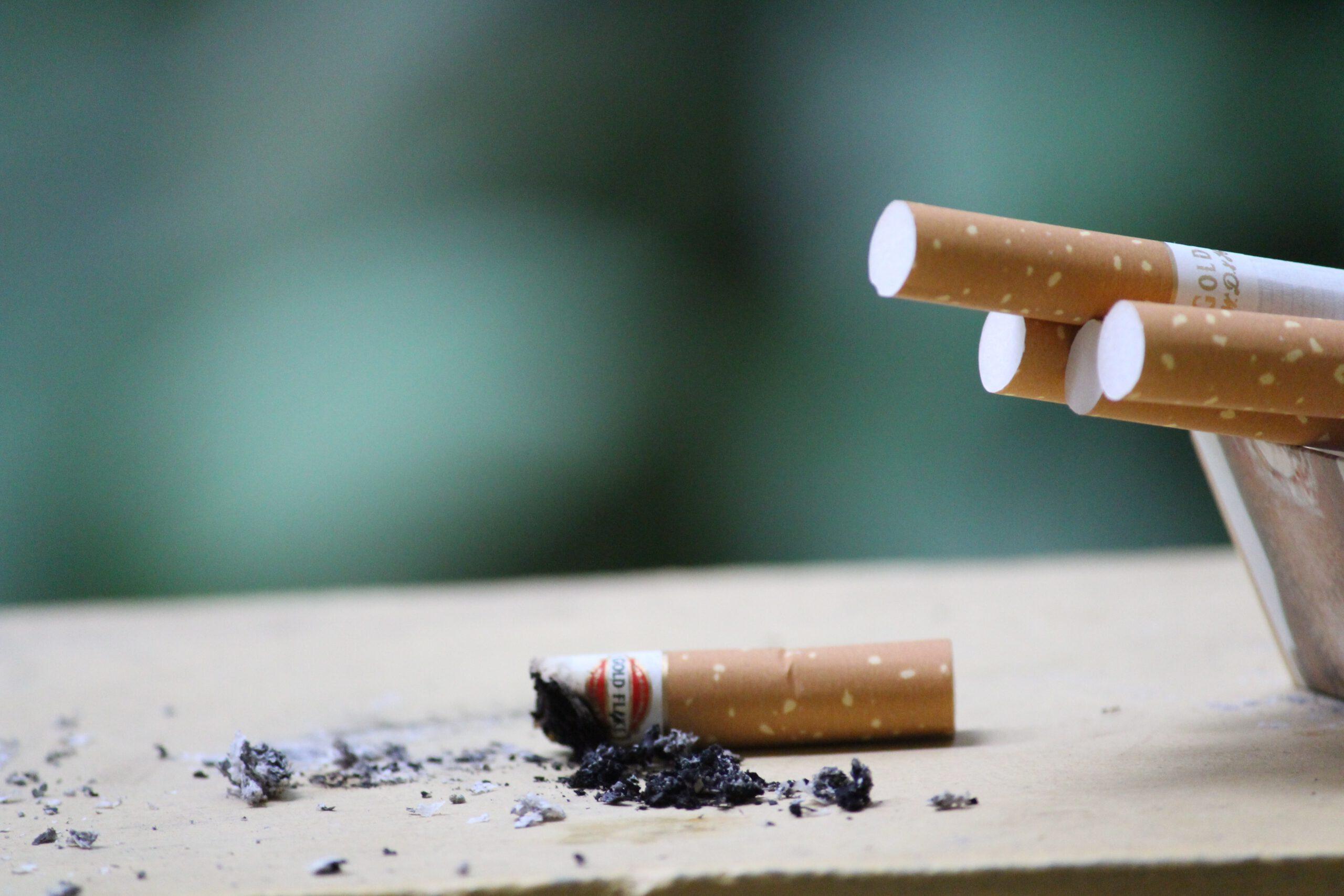 Roken Enzo